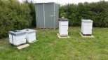 NBC Apiary New Shed